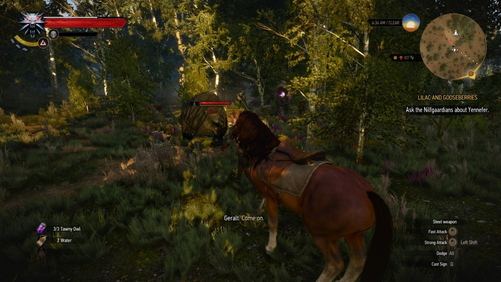 The Witcher 3 Southern White Orchard Place of Power
