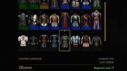 witcher 3 armor cidarian gambeson