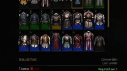 witcher 3 armor skellige tunic