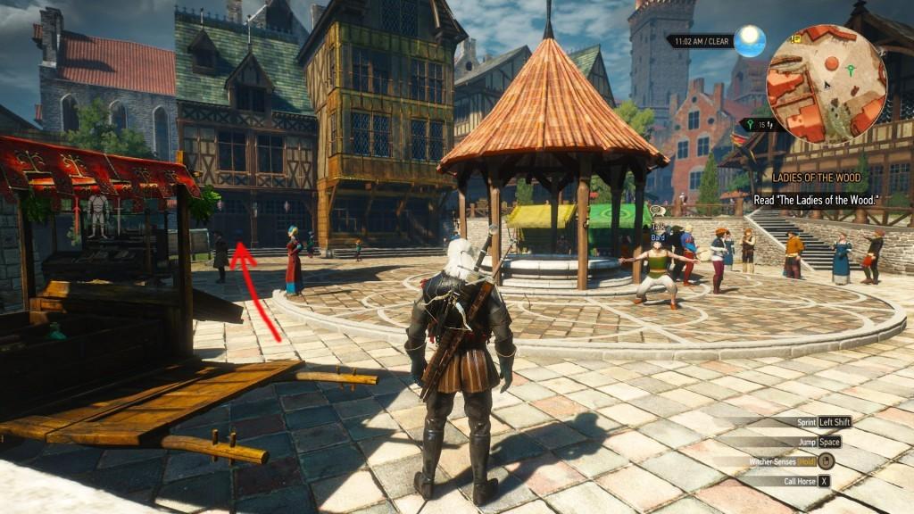 witcher 3 skill reset novigrad location